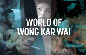 World of Wong Kar Wai